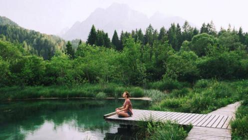 """Ở nhà phố vườn sinh thái, """"tắm"""" rừng nguyên sinh"""