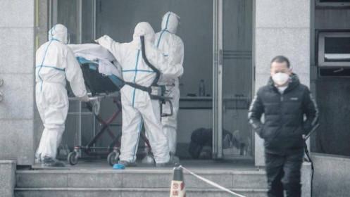 Dịch do virus Corona: Cập nhật số ca tử vong tại Trung Quốc