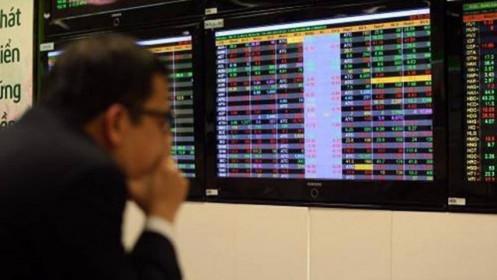 Thị trường xanh, nhà đầu tư khóc