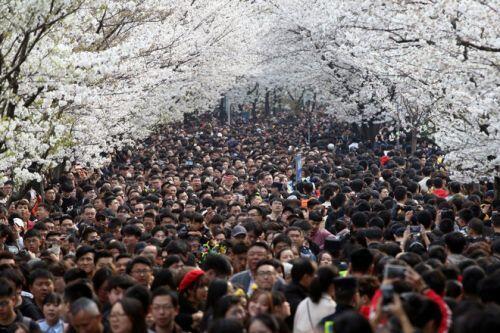 """Trung Quốc """"rúng động"""", không thể tin nổi: Tỉnh 80 triệu dân tuyên bố có... 17 người nghèo"""