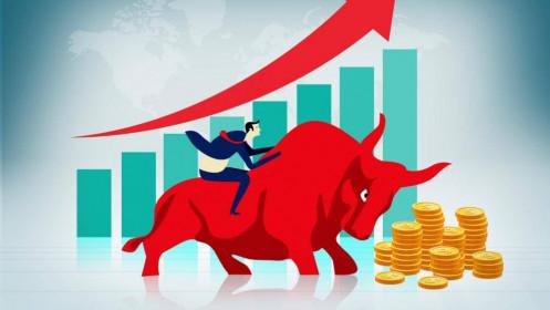 Nhịp đập Thị trường 02/12: VN-Index thăng hoa trở lại