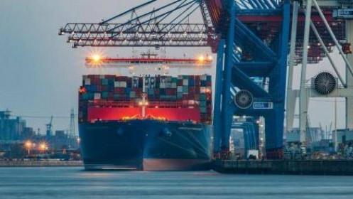 Giá container rỗng tăng 10 lần: Giá ảo và nỗi buồn thật?