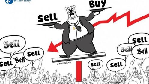 Nhịp đập Thị trường 08/02: VN-Index lao dốc mạnh với khối lượng giao dịch tăng cao