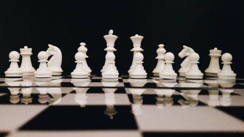 Đi tìm sự khác biệt giữa thông minh và khôn ngoan