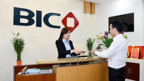 Lãi ròng BIC tăng gần 11 tỷ đồng sau kiểm toán