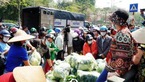 Nông sản Hải Dương chờ 'giải cứu': Khó khăn chồng khó khăn