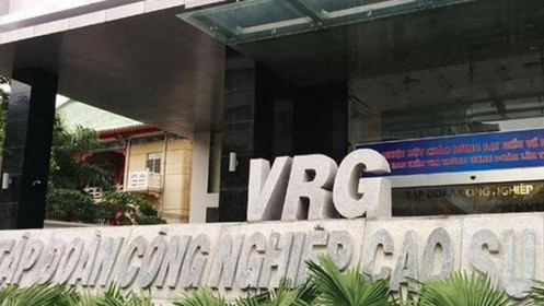 Thanh tra điểm tên VRG, Vinafor, Vinatea do sai phạm trong quản lý đất đai