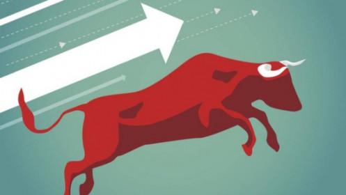 Nhịp đập Thị trường 25/02: Cú rơi vừa lạ vừa quen của VN-Index