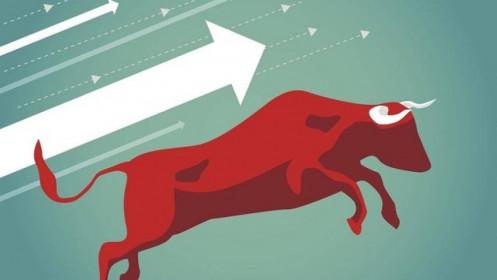 Nhịp đập Thị trường 01/03: Nhóm chứng khoán dẫn dắt thị trường
