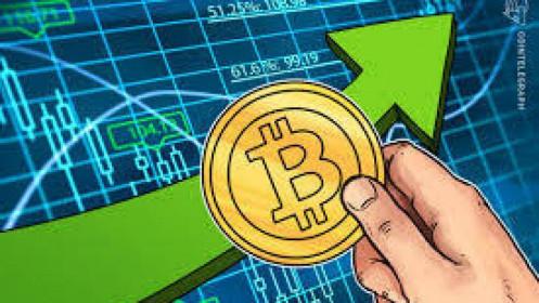 Cha đẻ bitcoin có giá trị tài sản 55 tỷ USD vẫn chưa lộ diện