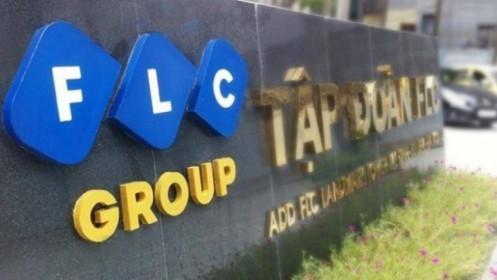 FLC nâng mục tiêu lãi trước thuế 2021 lên 1,100 tỷ đồng