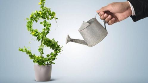 Học cách đầu tư hiệu quả từ các doanh nhân