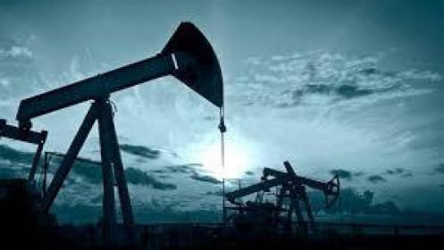 Giá dầu thế giới lên cao nhất một tháng
