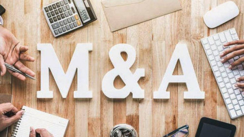Doanh nghiệp tư nhân tăng trưởng nhờ M&A