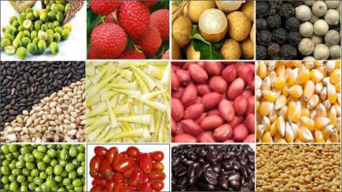 Thị trường hàng hóa 26/5: Nông sản giảm mạnh