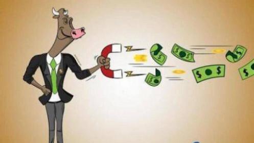 Chuyển động tự doanh 28/5: Mua ròng hơn 200 tỷ đồng
