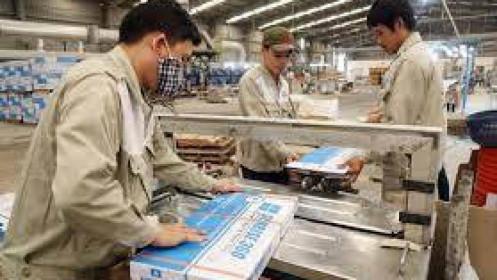 Nhóm cổ đông lớn Hòa Bình Minh giảm hơn một nửa tỷ lệ sở hữu tại CVT
