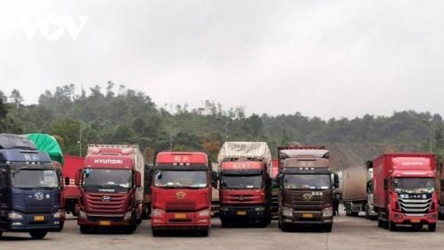 Trung Quốc mở 14 khu tập kết nhập khẩu nông sản Việt Nam