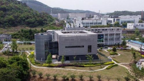 Trung Quốc tính lập thêm hàng chục phòng thí nghiệm sinh học giữa tranh cãi nguồn gốc Covid-19