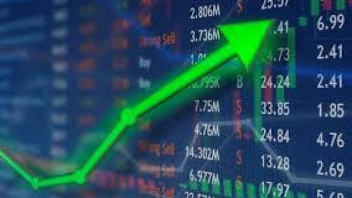 Đi tìm cổ phiếu siêu hạng hồi sinh từ vực thắm