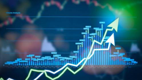 Thanh khoản thấp, VN-Index giảm nhẹ