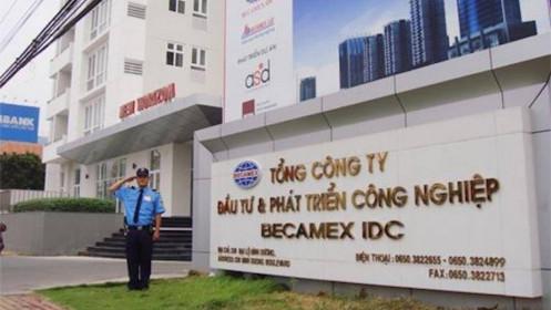 Cổ phiếu BCM giảm sàn 2 phiên liên tiếp