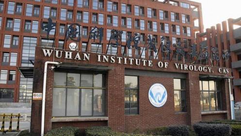 Viện virus học Vũ Hán cảnh báo thế giới sẽ tiếp tục xuất hiện nhiều biến chủng mới