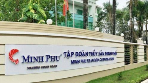 MPC: Lãi ròng quý 2 tăng 28%, phải thu thuế chống bán giá hơn 336 tỷ đồng