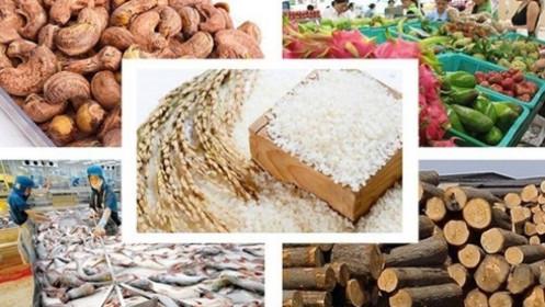 Thị trường hàng hóa 13/8: Nông sản bật tăng sau báo cáo