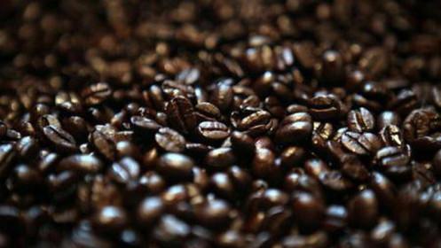 [Video] Giá cafe tăng nhanh