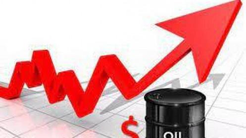 Thị trường hàng hóa 24/8: Dầu thô phục hồi mạnh mẽ