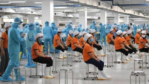 Gần 800 doanh nghiệp Bình Dương tạm dừng hoạt động