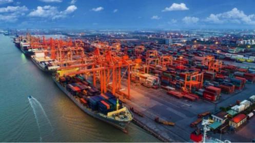 Cước vận tải biển tăng, kim ngạch xuất khẩu cũng tăng, liệu có nghịch lý?