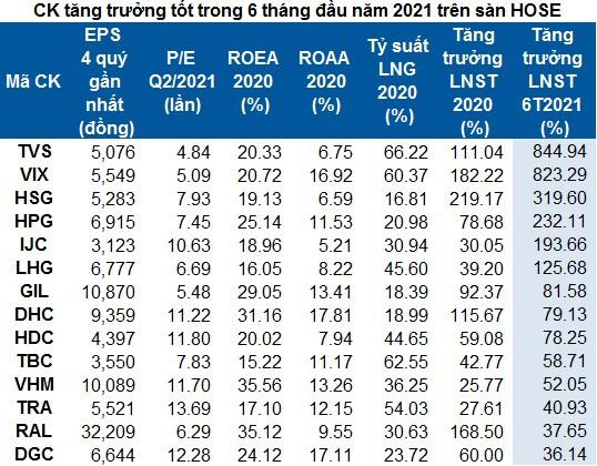 Lọc cổ phiếu cơ bản tăng trưởng tốt nửa đầu năm