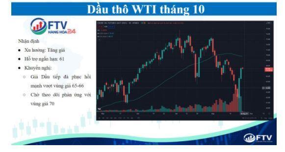 Thị trường hàng hóa 25/8: Thị trường bật tăng