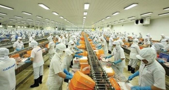 """Xuất khẩu hải sản gấp rút gỡ """"thẻ vàng"""" từ EC"""