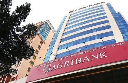 Lý giải hiện tượng lợi nhuận ở Agribank