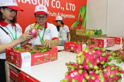 Kỳ vọng đột phá xuất khẩu nông sản