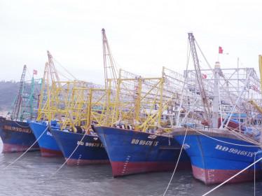 Báo cáo Thủ tướng vụ 'tàu 67' bị làm khó khi mua bảo hiểm