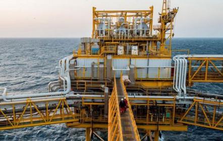 Giá xăng, dầu (14/1): Tiếp tục giảm sâu