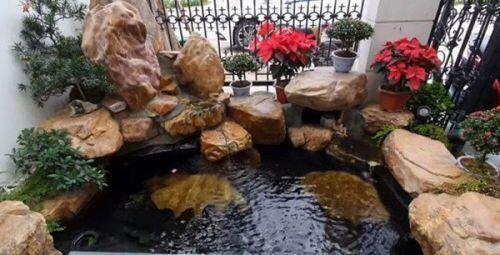 Tuấn Hưng xây dựng vườn nhỏ xinh trong biệt thự tiền tỷ, nhìn là biết đẳng cấp