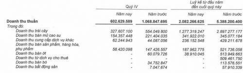 HAG báo lỗ gộp trong quý 4/2019, tiếp tục giảm nợ vay