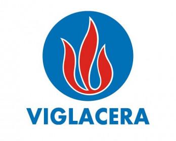 VGC phát hành gần 14 triệu cp để tăng vốn điều lệ