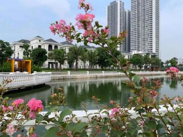 Dự án bất động sản của Vinhomes được cấp nhiều sổ đỏ cho người nước ngoài nhất Hà Nội