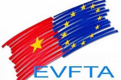 [DIỄN ĐÀN TÀI CHÍNH TUẦN TỪ 17-22/2] Đón vốn Châu Âu vào Việt Nam theo EVFTA