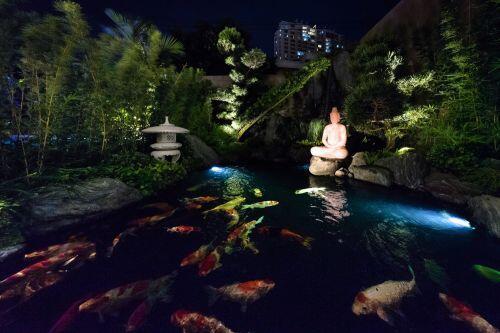 Ngôi nhà bậc thang vẻ ngoài giản dị, bên trong đẹp bất ngờ với hồ cá Koi