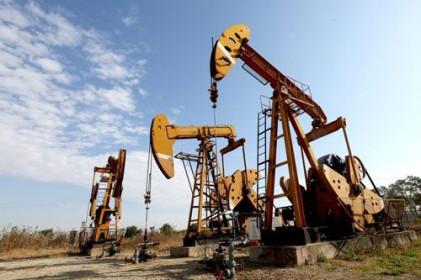 Giá xăng, dầu (24/2): Quay đầu giảm mạnh