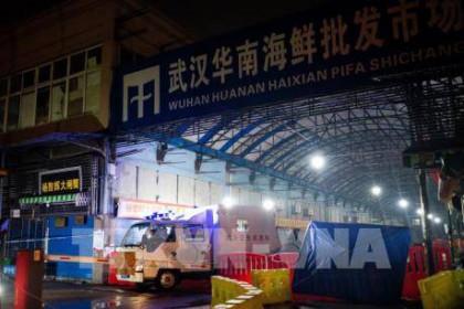 Giới khoa học Trung Quốc: COVID-19 không bắt nguồn từ chợ hải sản Vũ Hán
