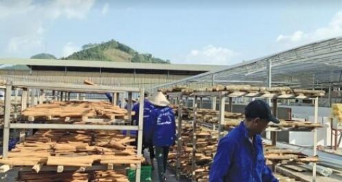"""""""Bệ phóng"""" đưa nông sản Việt vào EU"""