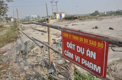 Thanh tra các dự án sai phạm về đất đai tại 7 địa phương, Hà Nội và TP.HCM có tên